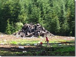 05-16-08 - 05-17-08 Pasture Renovation - lower back acreage 015