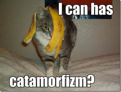 catamorphism